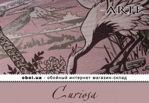Інтер'єри Arte Curiosa