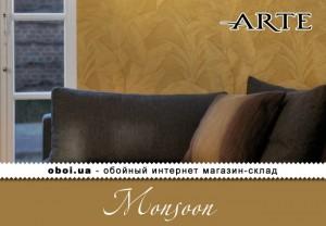 Интерьеры Arte Monsoon