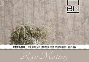 Інтер'єри BN Raw Matters
