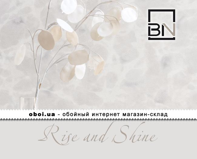 Вінілові шпалери на флізеліновій основі BN Rise and Shine