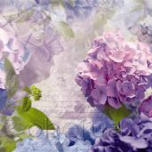 Обои Komar Flower & Textures 8-705