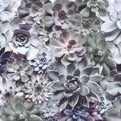 Обои Komar Flower & Textures 8-962
