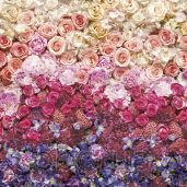 Обои Komar Flower & Textures 8-965