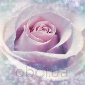 Обои Komar Flower & Textures xxl2-020