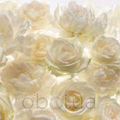 Обои Komar Flower & Textures xxl4-007