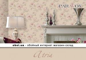 Интерьеры Paravox Atria