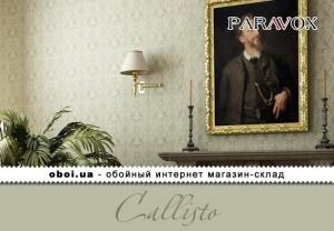 Интерьеры Paravox Callisto