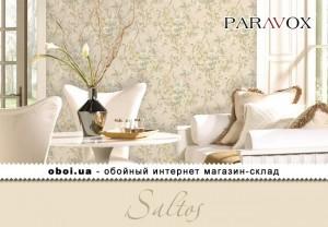 Интерьеры Paravox Saltos